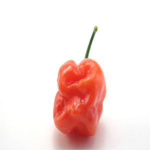 Hot-habaneros