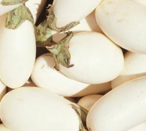 Garden-Eggs